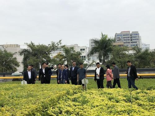 14参观联发华美空间屋顶绿化材料试验基地5.jpeg